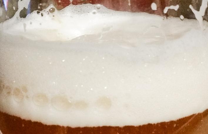 Der Hopfenschmecker - Über Biergenuss und mehr ... Mein Jungbier
